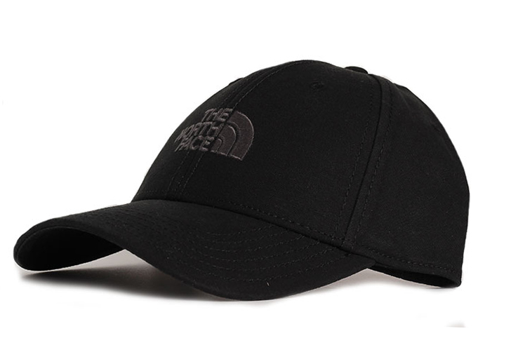 240e8ea8b86 The North Face 66 Classic Hat Black - Boardvillage
