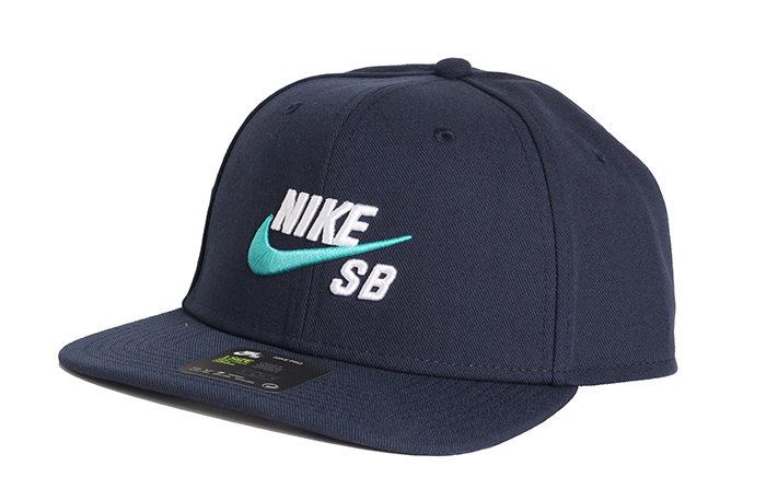 Nike SB Cap Pro Obsidian / White