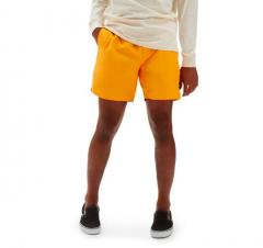 Vans Primary Volley II Boardshorts Saffron